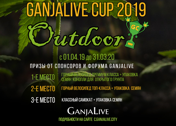 GanjaLive Cup 2019 - Outdoor